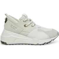 Παπούτσια Γυναίκα Sneakers Steve Madden SMPCLIFF-WHTWHT λευκό