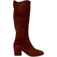 Παπούτσια Γυναίκα Μπότες Bueno Shoes 20WR5104 καφέ