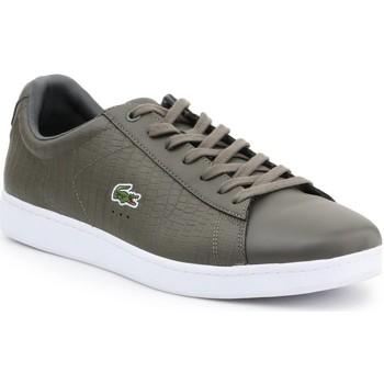 Παπούτσια Άνδρας Χαμηλά Sneakers Lacoste 7-33SPM10373T2 olive green