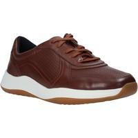 Παπούτσια Άνδρας Χαμηλά Sneakers Clarks 148125 καφέ