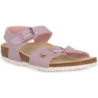 Παπούτσια Παιδί Σανδάλια / Πέδιλα Birkenstock RIO LAVENDER BLUSH CALZ S Grigio