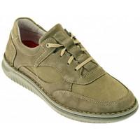 Παπούτσια Άνδρας Ψηλά Sneakers Zen  Multicolour
