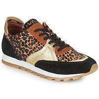 Παπούτσια Γυναίκα Χαμηλά Sneakers JB Martin GLOIRE Black