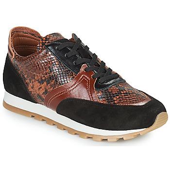 Παπούτσια Γυναίκα Χαμηλά Sneakers JB Martin GLOIRE Brown