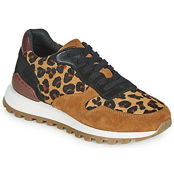 Παπούτσια Γυναίκα Χαμηλά Sneakers JB Martin HABILLE Brown