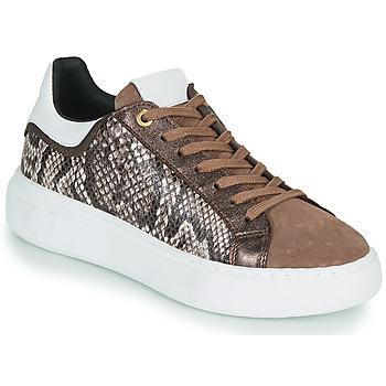 Παπούτσια Γυναίκα Χαμηλά Sneakers JB Martin HIBISCUS Brown