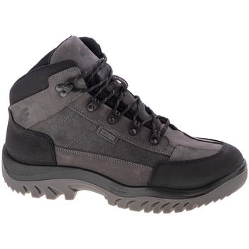 Παπούτσια Άνδρας Πεζοπορίας 4F Men's Trek Grise
