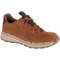 Παπούτσια Άνδρας Χαμηλά Sneakers Caterpillar Startify LO WP Marron