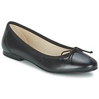 Παπούτσια Γυναίκα Μπαλαρίνες Betty London VROLA Black