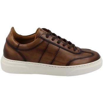 Παπούτσια Άνδρας Χαμηλά Sneakers Calce  Marrón