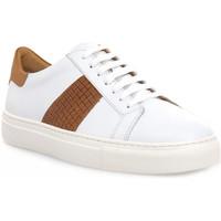 Παπούτσια Άνδρας Χαμηλά Sneakers Soldini COLORADO BIANCO CUOIO Bianco