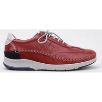 Παπούτσια Άνδρας Derby Fluchos  Red