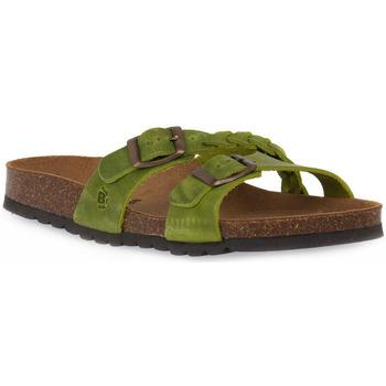 Παπούτσια Γυναίκα Τσόκαρα Bioline 233 ALOHE INGRASSATO Verde