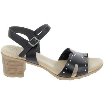 Παπούτσια Γυναίκα Σανδάλια / Πέδιλα Porronet Sandale F12626 Noir Black