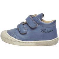 Παπούτσια Παιδί Ψηλά Sneakers Naturino 2012904 16 Μπλε
