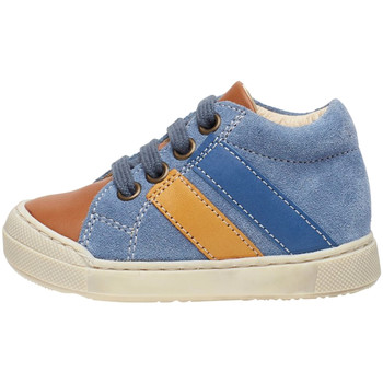 Sneakers Falcotto 2014606 01