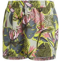 Υφασμάτινα Παιδί Μαγιώ / shorts για την παραλία adidas Originals GM8393 Πράσινος