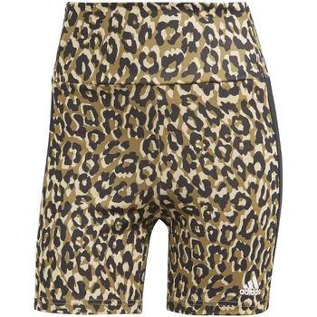 Shorts & Βερμούδες adidas GL3963