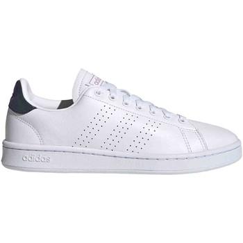 Sneakers adidas FY8955