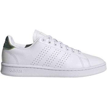 Sneakers adidas FY8956