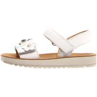 Παπούτσια Παιδί Σανδάλια / Πέδιλα Naturino 502733 01 λευκό