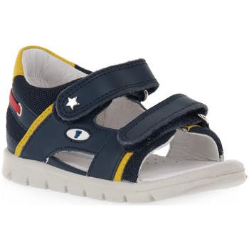Παπούτσια Κορίτσι Σανδάλια / Πέδιλα Naturino FALCOTTO 0C02 NEW SAILING Blu