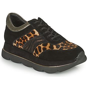Παπούτσια Γυναίκα Χαμηλά Sneakers Café Noir BORDA Black / Leo