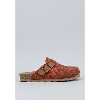 Παπούτσια Γυναίκα Σαμπό Nice  Orange