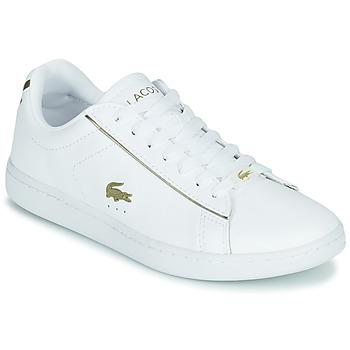Παπούτσια Γυναίκα Χαμηλά Sneakers Lacoste CARNABY EVO 0721 3 SFA Άσπρο