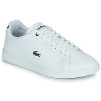 Παπούτσια Άνδρας Χαμηλά Sneakers Lacoste CARNABY BL21 1 SMA Άσπρο