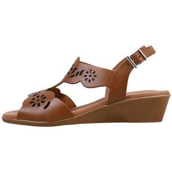 Παπούτσια Γυναίκα Σανδάλια / Πέδιλα Amanda  Brown