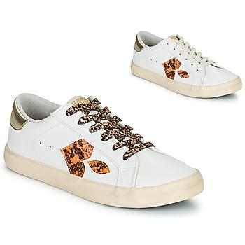 Παπούτσια Γυναίκα Χαμηλά Sneakers Le Temps des Cerises AUSTIN Άσπρο / Gold