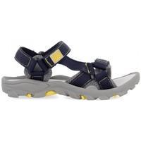 Παπούτσια Παιδί Σπορ σανδάλια Gioseppo SANDALIAS NIÑO  DUVAL 59029 Grey