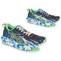 Παπούτσια Γυναίκα Τρέξιμο Asics NOOSA TRI 13 Multicolour