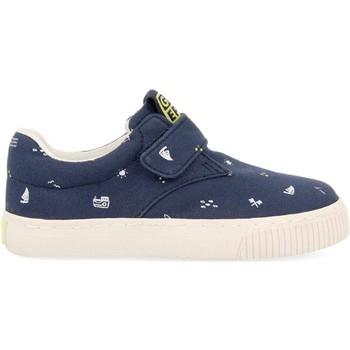 Παπούτσια Παιδί Χαμηλά Sneakers Gioseppo ZAPATILLAS CON VELCRO NIÑOS  MYERS 59606 Μπλέ