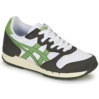 Παπούτσια Χαμηλά Sneakers Onitsuka Tiger ALVARADO Green / Black / Άσπρο