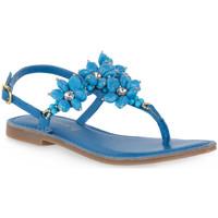 Παπούτσια Γυναίκα Σανδάλια / Πέδιλα Café Noir CAFE NOIR B005 INFRADITO Blu