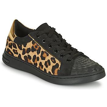 Παπούτσια Γυναίκα Χαμηλά Sneakers Geox JAYSEN Black / Leopard
