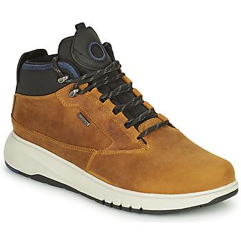 Παπούτσια Άνδρας Μπότες Geox AERANTIS Camel