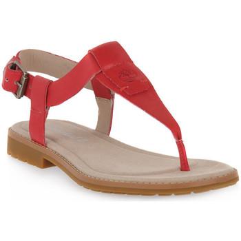Παπούτσια Γυναίκα Σανδάλια / Πέδιλα Timberland CHICAGO 2 THONG Rosa