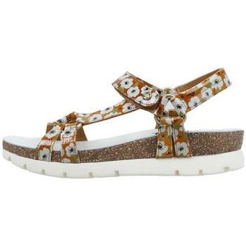Παπούτσια Γυναίκα Σανδάλια / Πέδιλα Panama Jack  Beige