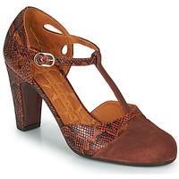Παπούτσια Γυναίκα Γόβες Chie Mihara KUNA Brown