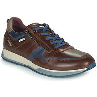 Παπούτσια Άνδρας Χαμηλά Sneakers Pikolinos CAMBIL Brown / Μπλέ