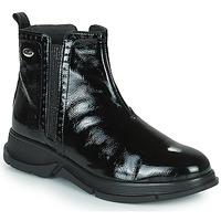 Παπούτσια Γυναίκα Μπότες Scholl YORK Black