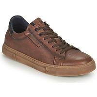 Παπούτσια Άνδρας Χαμηλά Sneakers Fluchos NIKO Brown