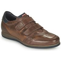 Παπούτσια Άνδρας Χαμηλά Sneakers Fluchos DANIEL Brown