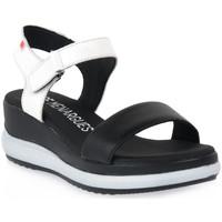 Παπούτσια Γυναίκα Σανδάλια / Πέδιλα Pepe Menargues NEGRO VACUNO Nero