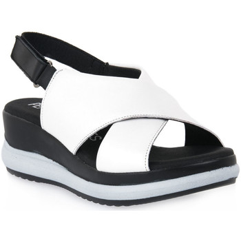 Παπούτσια Γυναίκα Σανδάλια / Πέδιλα Pepe Menargues TRIPOLI BIANCO Bianco