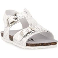 Παπούτσια Αγόρι Σανδάλια / Πέδιλα Gold Star BIANCO Bianco