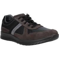 Παπούτσια Άνδρας Χαμηλά Sneakers Melluso U15432E Γκρί